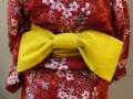 żółta kokarda