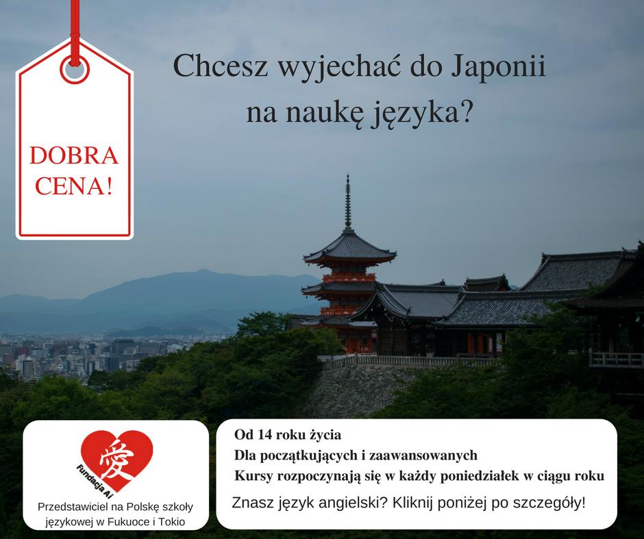 Japonia wyjazd strona